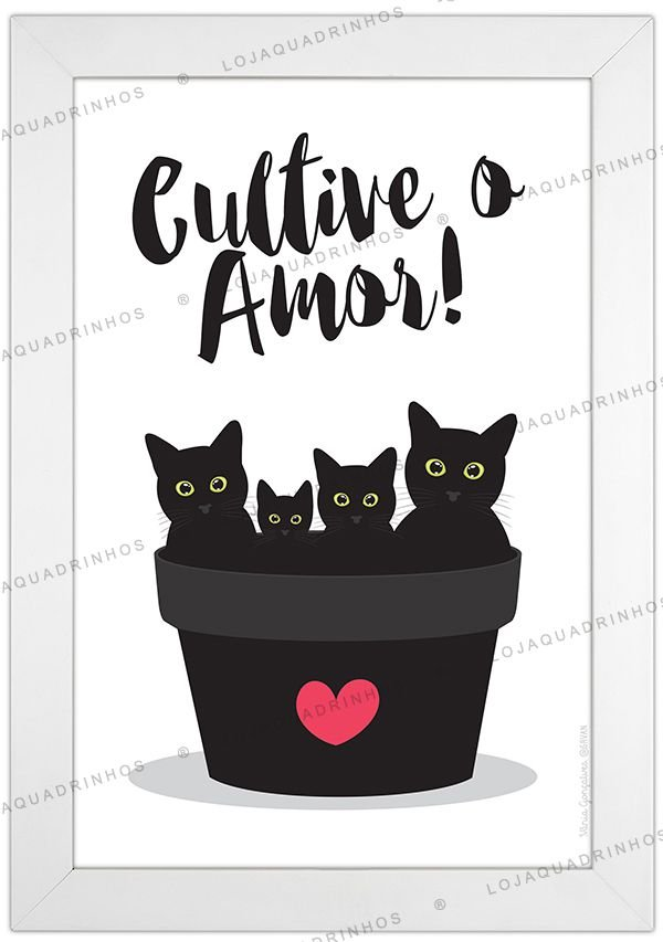 Quadro de Gato - Cultive o Amor