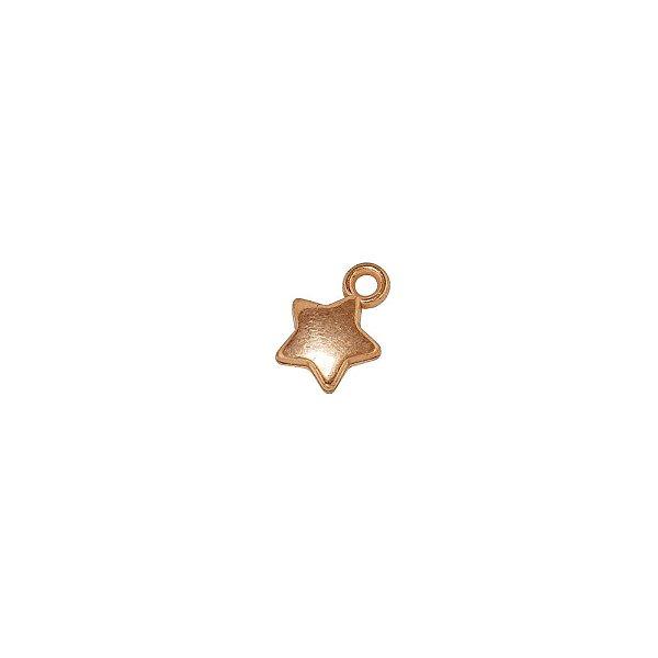 00-0298 - Pacote com 1 Kg de Pingente Estrela em ABS 10mmx14mm