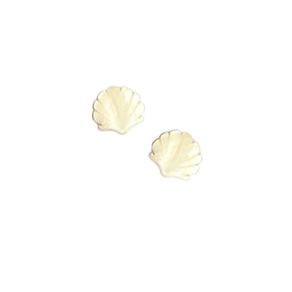 12-0276 Pacote com 50 Madrepérolas Shell com Passante 18mm x 20mm
