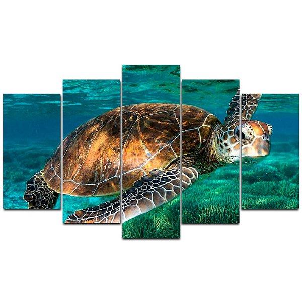 Tartaruga - Quadro Mosaico 5 telas em Canvas