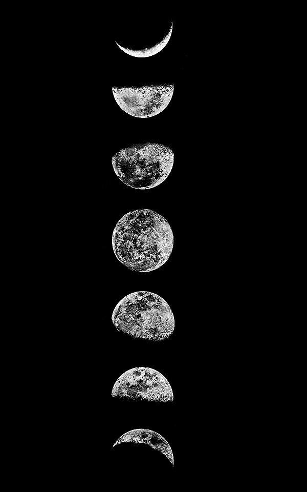 Tela Fases da Lua