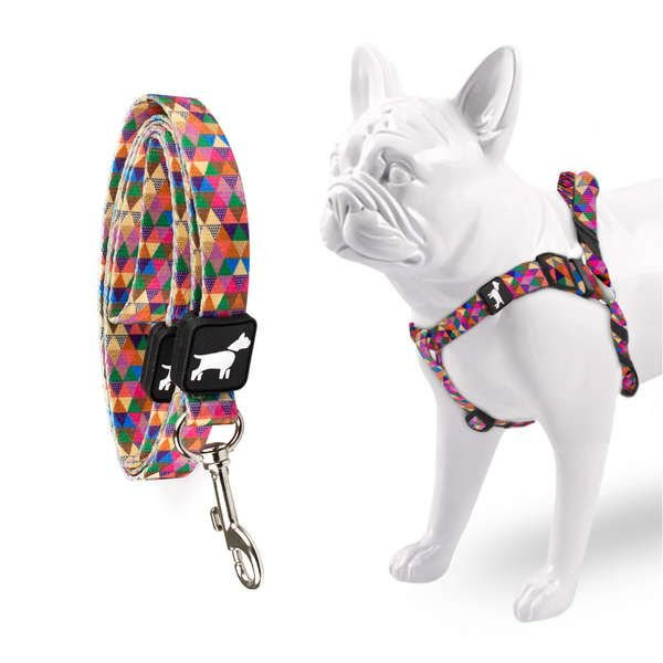 Peitoral e Guia Don Dog Good Vibes