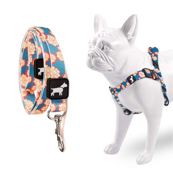 Peitoral e Guia Don Dog Vintage