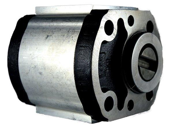 Bomba de Engrenagem - IR0008426481 - FMX