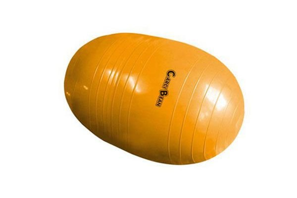 Bola Feijão P/ Pilates Carci Bean 55 cm - Carci