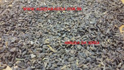 Arruda da Siria (Peganum Harmala) - 100g