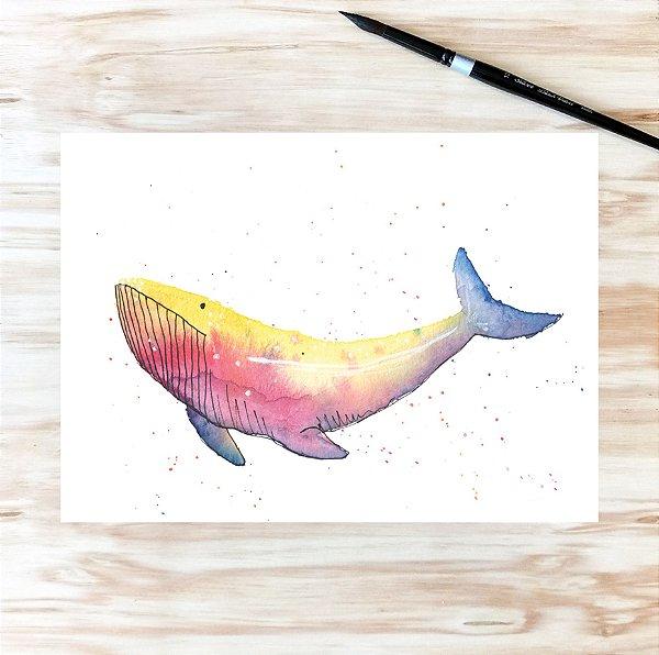 baleia íris A4