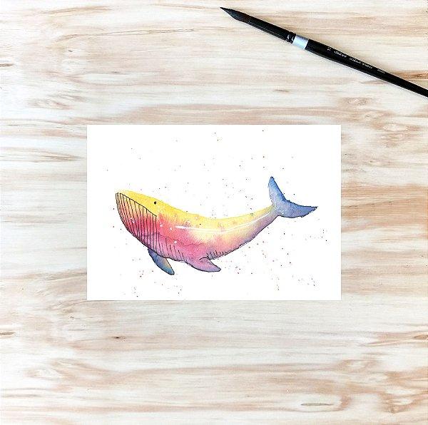baleia íris A5