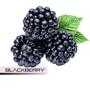 Blackberry - 10ml | TPA