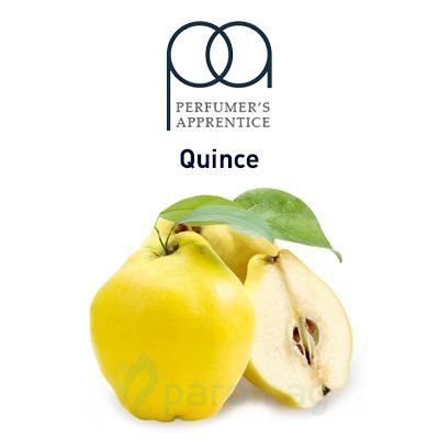 Quince - 10ml | TPA