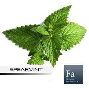 Spearmint - 10ml | TPA
