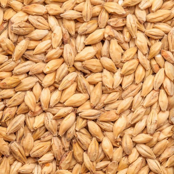 Malte Agraria Pilsen - 100g
