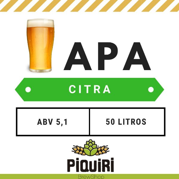 Kit receitas cerveja artesanal 50L APA Citra