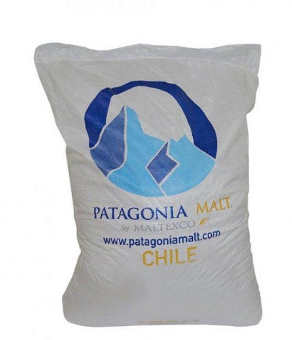 Malte Patagonia Pale Ale - 25kg (SACA)