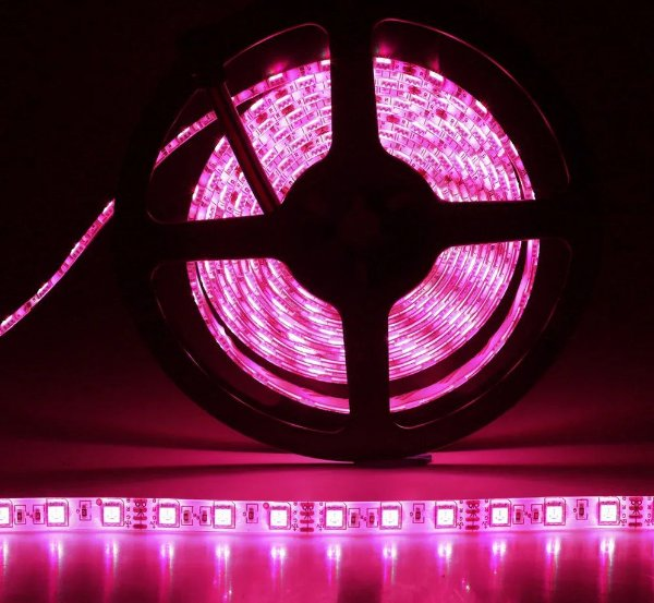 Fita LED 5050 5 Metros Siliconada Rosa Pink Prova D'água Sem Fonte