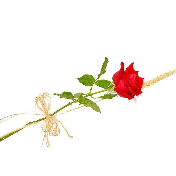 Rosa Unitária
