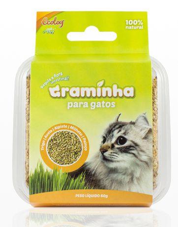 Graminha para Gatos