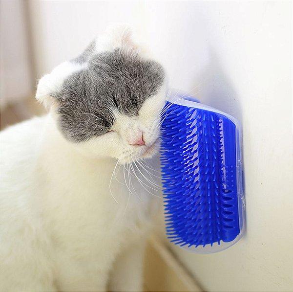 Escova de Canto Azul