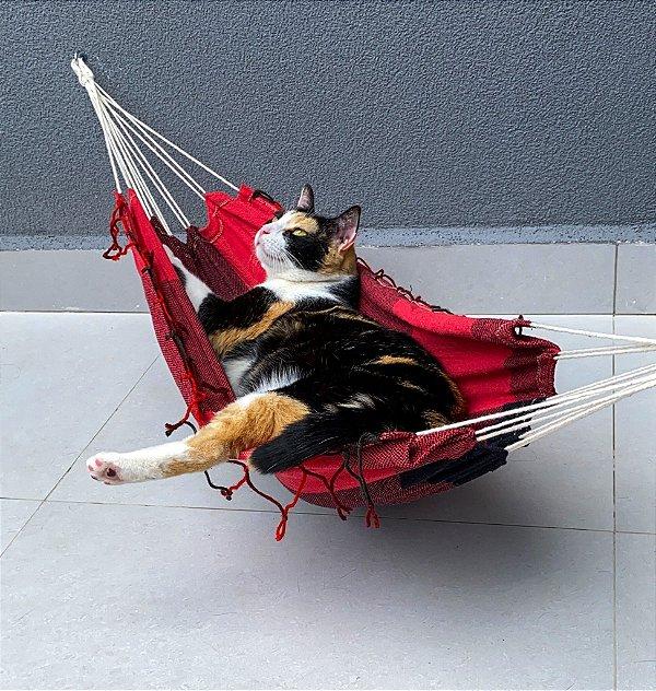 Rede para Gatos G