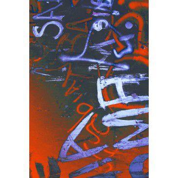 Tela Street Art 1004
