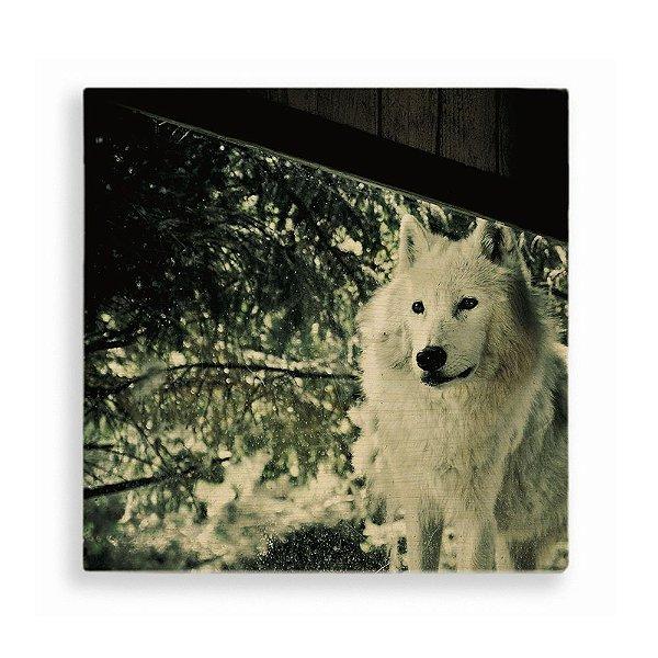 Quadro de Madeira - Wolf