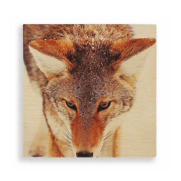 Quadro de Madeira - Fox