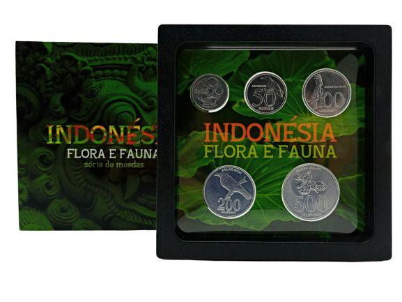 Display de Plástico Indonésia com 5 moedas