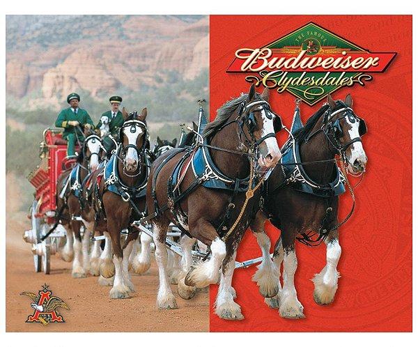 Placa metálica budweiser horse