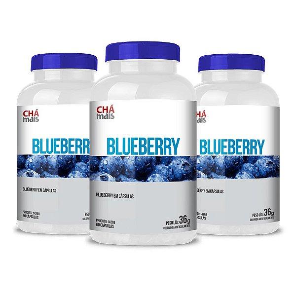 Combo 3 Potes - Blueberry em cápsulas - 60 cápsulas - ClínicMais