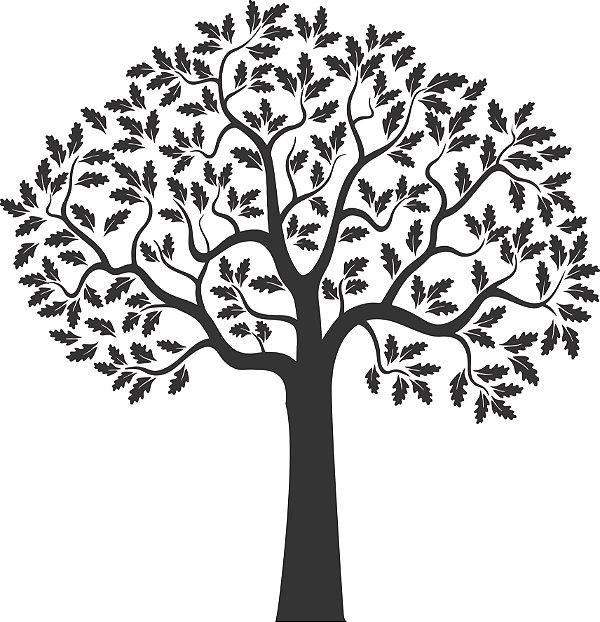 Adesivo de Parede Floral Árvore 06