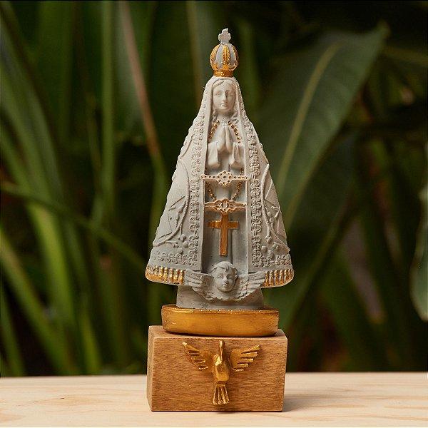 Nossa Senhora Aparecida - Degradê Cinza com Dourado