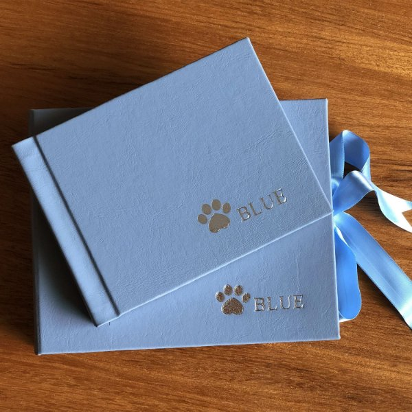 Álbum P miolo branco + Caixa Box