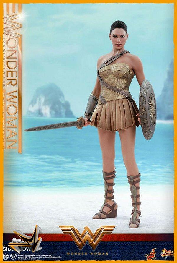 Mulher Maravilha 1/6 Versão Training Armor Dc Comics - Hot Toys (reserva de 10% do valor)