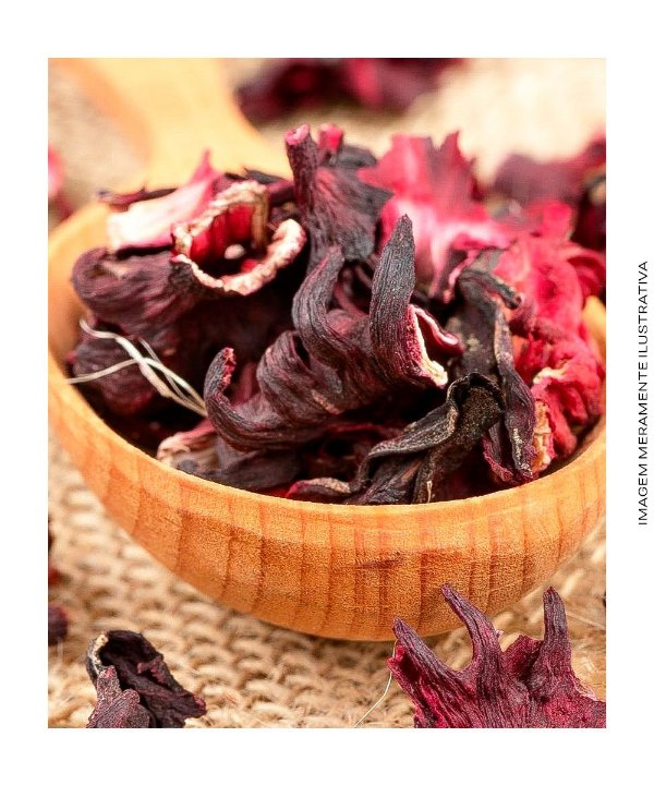 Hibisco Flor