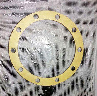 Ring Light  para Tripé de câmera 60 cm 10 lampadas