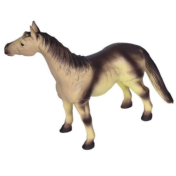 Cavalo Morgan - DTC