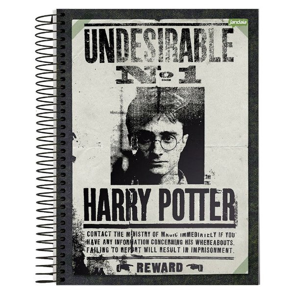 Caderno Harry Potter - Undesirable n°1  - 1 Matéria - Jandaia