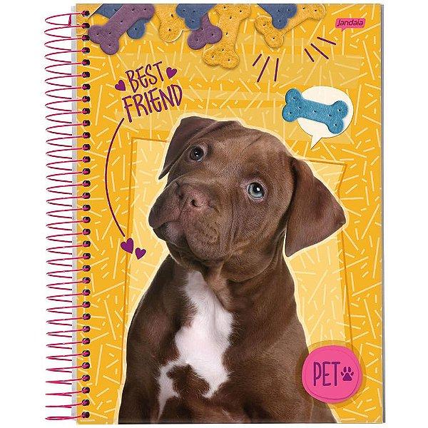 Caderno Pet - 1 matéria - Labrador - Jandaia