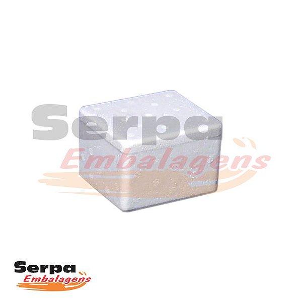 Caixa de Isopor para Alimentos / Medicamentos 250gr