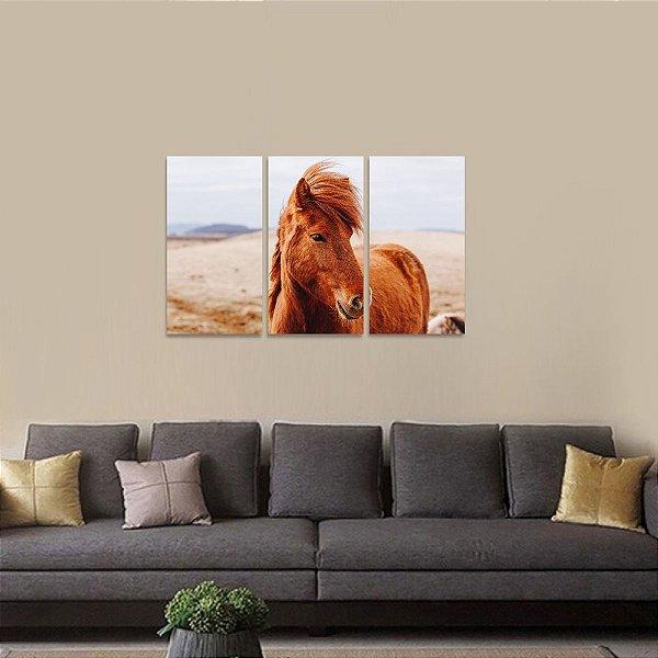 Quadro decorativo Animais Cavalo na Natureza