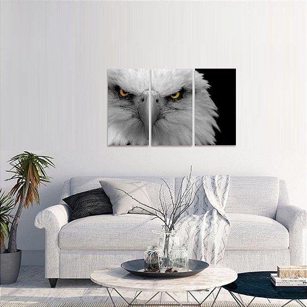 Quadro Águia Branca Predador Conjunto 3 Peças