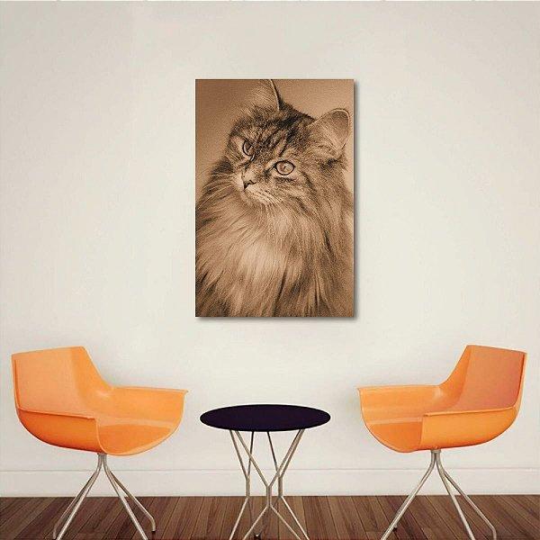 Quadro The Cute Cat decorativo Gatinho Sépia