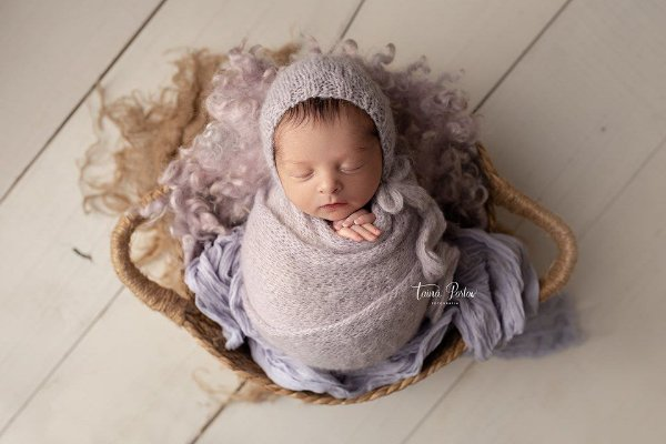 Cheesecloth - Lilás Pastel