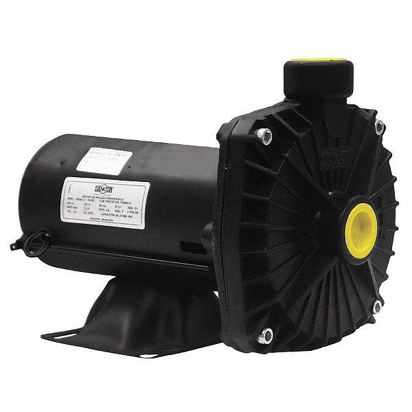 Bomba Dancor 1 CV Motor WEG Pratika Eixo em Inox CP-6R 127 220V ... d90f8cbfdd9