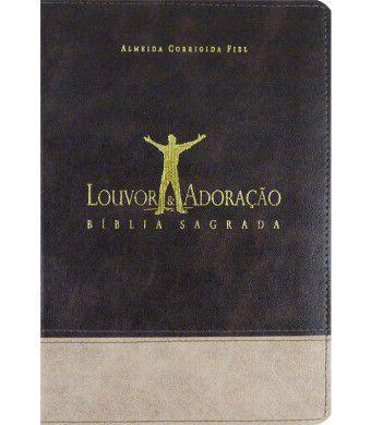 Bíblia Louvor e Adoração Capa Bicolor Marrom