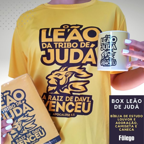 Box Bíblia Leão de Judá