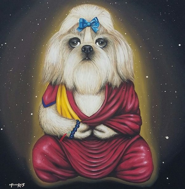 Mônico Reis - Dalai Shitzu