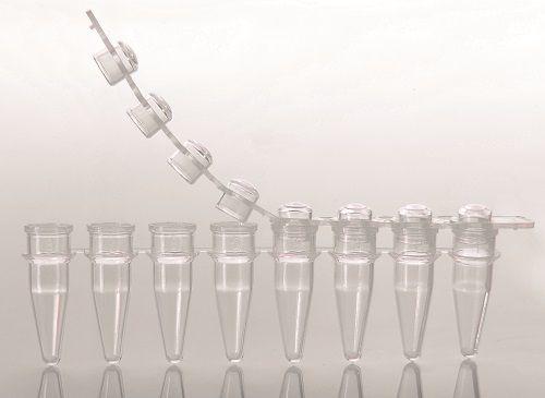 Microtubo em Tiras para PCR Transparente