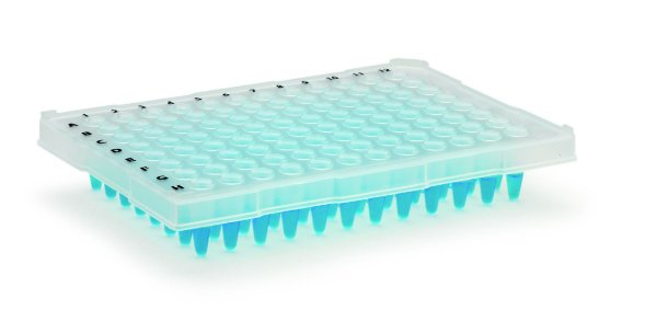 Microplaca de PCR Transparente 96 Poços
