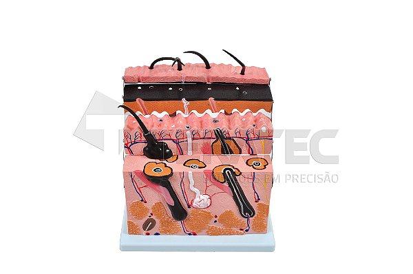 Corte de Pele em Camada - SD-5054